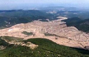 CHP'li Durmaz'dan ağaç katliamına neden olacak projeye suç duyurusu