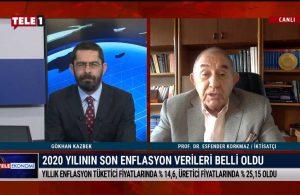 İktisatçı Prof. Dr. Esfender Korkmaz'dan 2021'de yatırım için ipuçları – TELE EKONOMİ
