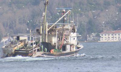 71 gırgır teknesine el konuldu