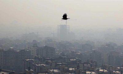 İran'da 40 binden fazla kişi hava kirliliği nedeniyle hayatını kaybetti