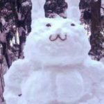 Kardan insan deyip geçme