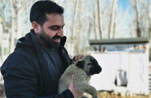 Ovacık Belediye Başkanı sokak hayvanları için makam aracını sattı