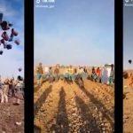 İşçilerin TikTok'ta çektiği videolar sinemaya aktarıldı