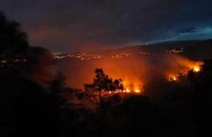 Trabzon'da iki ilçede orman yangını