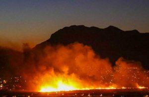 Antalya'da sazlık alanda yangın: Seraya sıçradı!