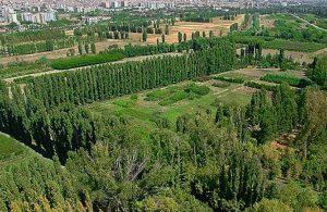 Mansur Yavaş, Atatürk Orman Çiftliği'ne sahip çıktı: ABB ihaleyi kazandı