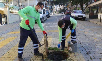 Efeler Belediyesi'nden kent zararlıları ile mücadele