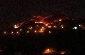 Trabzon'da orman yangını
