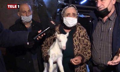 TELE1, Kanal İstanbul mağdurlarına mikrofon uzattı: Önce beni öldürsünler, sonra hayvanlarımı alsınlar