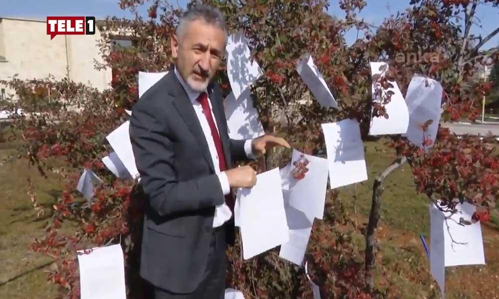 Koca vekilleri dinledik dedi, ağaca asılan 127 soruyu görmezden geldi