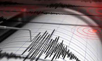 Muğla'da 4.2 büyüklüğünde deprem!