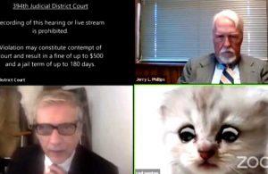 Çevrimiçi duruşmada 'filtre' krizi: Ben kedi değilim