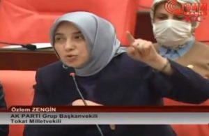 Özlem Zengin: Selahattin Demirtaş, Öcalan'ı örnek alsın