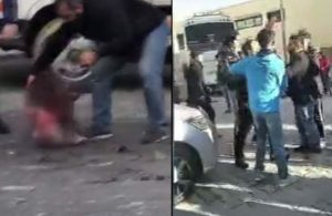 Sultangazi'de pitbull dehşeti mahalleyi karıştırdı