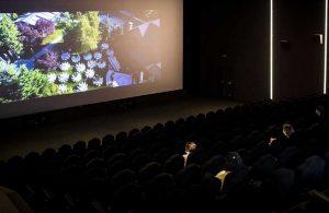Kültür ve Turizm Bakanlığı'nın genç sinemacılara destek programının detayları belli oldu