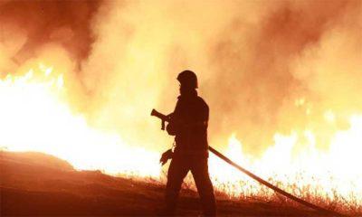 Burdur Gölü kenarındaki sazlık alanda yangın