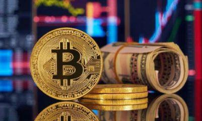 3 ilde bitcoin dolandırıcılığı operasyonu: Çok sayıda gözaltı var