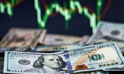 Merkez Bankası'nın yıl sonu dolar kuru tahmininde hızlı yükseliş