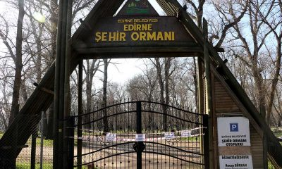 Edirne'de park ve ormanlara girişe kısıtlama