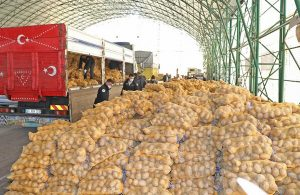Mudanya Belediyesi'nden ihtiyaç sahiplerine 80 ton patates