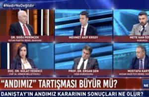 Perinçek'in sözleri üzerine canlı yayında tartışma çıktı
