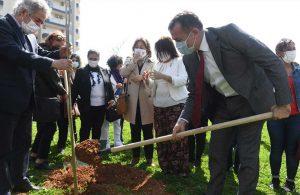 Mimozalar Yenişehir'de toprakla buluştu