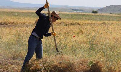 Salgın döneminde 53 bin çiftçi tarımdan çekildi