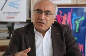 Soylu'nun hedef gösterdiği İHD'nin Eş Başkanı Öztürk Türkdoğan gözaltına alındı