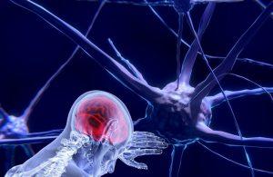 Beyinde zombi nöronlar var, ölümden sonra harekete geçiyor