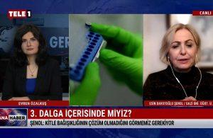 Esin Davutoğlu Şenol: Kitle bağışıklığının çözüm olmadığını görmemiz gerek – ANA HABER