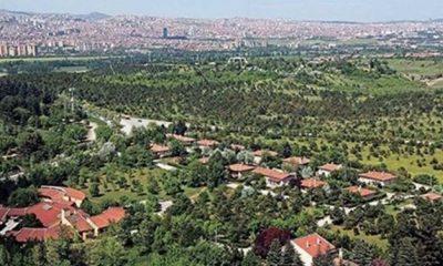 Gizli ihale! Atatürk Orman Çiftliği'nde ağaçları kesip otopark yapacaklar