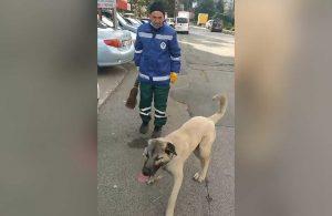 Süpürgesini kaçıran köpeğe böyle seslendi: O bana zimmetli