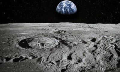 Bilim insanlarından 'Ay'a 6.7 milyon sperm örneği gönderme' planı
