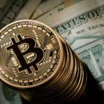 Bir kripto para platformu daha battı