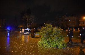 Kontrolden çıkan otomobil, ağacı devirip, takla attı: 4 yaralı