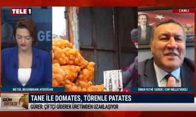 Tane ile domates, törenle patates: İktidarın, tarım politikası iflas etmiştir – GÜN ORTASI