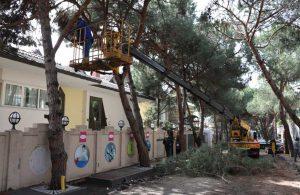 Kartal Belediyesi Park ve Bahçeler Müdürlüğü'nden yaz seferberliği