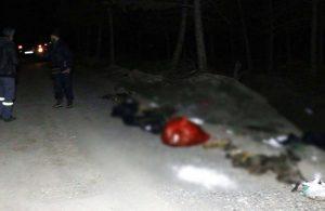 Ankara'da damar yolu açılmış 30 köpeğin cansız bedeni bulundu
