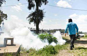 Adnan Menderes Bulvarı'nda temizlik ve ilaçlama