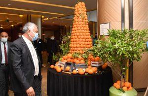 Karnaval dijital, portakal çiçeği kokusu gerçek