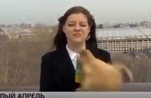 Canlı yayına dalan köpek muhabirin mikrofonunu kapıp kaçtı