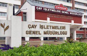 Çaykur AKP döneminde eridi!