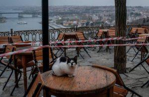 Esnaf İstanbul ve Ankara'da sokağa çıkıyor