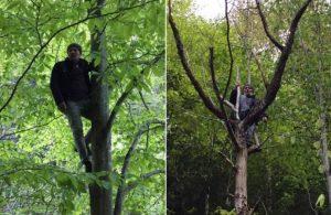 İkizdereliler iş makinalarını ağaçlarda bekliyor