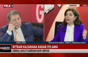 Pelin Gündeş: AKP 19 yıllık parti artık düzelmez – HABERE DOĞRU