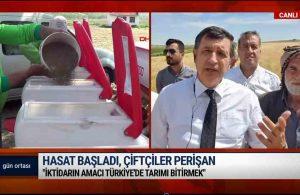 Çiftçi AKP'ye isyan etti: Allah onları kahretsin, paramız hep beşli çeteye gidiyor | GÜN ORTASI