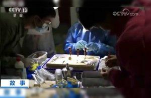 Koronavirüsle ilgili yeni iddia: Yarasaların ısırdığı görüntüler ortaya çıktı