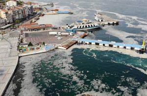 Prof. Sarı: Yüzeyde görünen deniz salyası buzdağının sadece ucu!