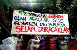 Gezi Direnişi'nden kareler: Karanlık gider Gezi kalır