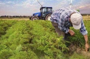 Ankara Büyükşehir Belediyesi'nden çiftçilere müjde